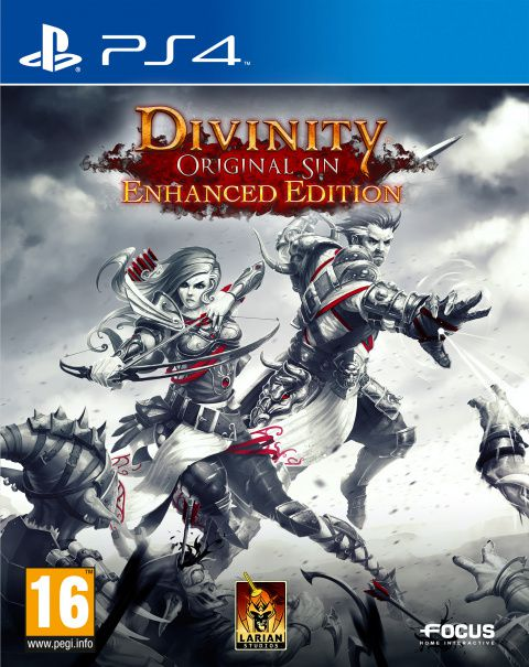 Divinity Original Sin - Enhanced edition PS4 (occasion)